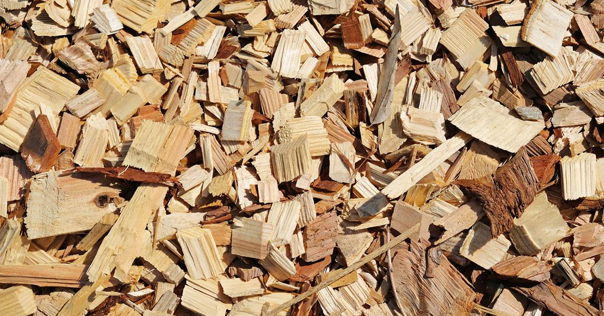 木質バイオマスについて